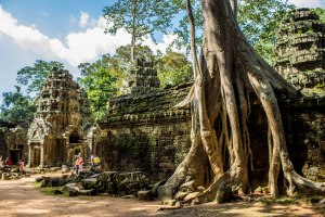 Ta Prohm - The Tomb Raider Temple