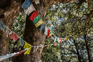 Ever present Tibetan prayer flags.